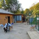 Zivalsko-terapevtski-center (28)